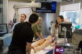 Team 5 engaged in Simulation