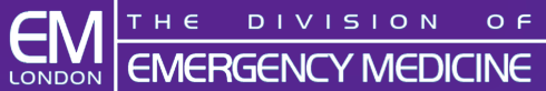 DivisionLogo - Purple.png